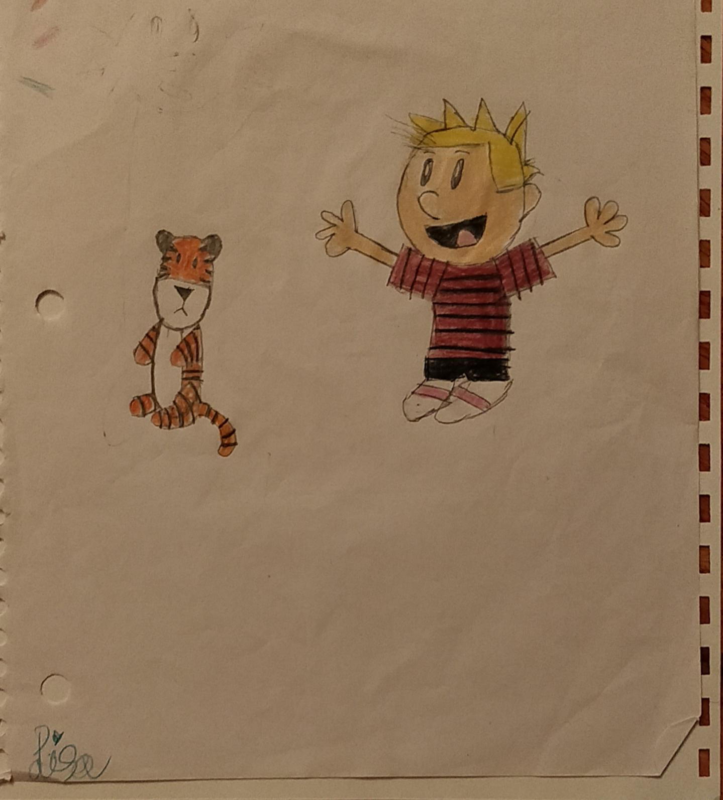 calvin and hobbes 1.jpg
